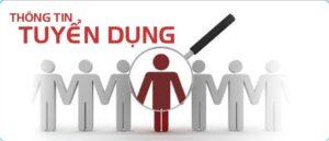 Thông tin tuyển dụng công ty Thành Dũng